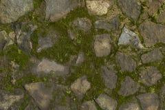背景绿色生苔和灰色石墙 免版税图库摄影