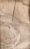 背景羊皮纸华伦泰 免版税库存照片