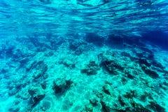 背景美丽的海底 免版税库存照片