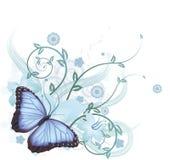 背景美丽的蓝色蝴蝶 库存照片