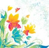 背景美丽的蝴蝶col花 免版税库存图片