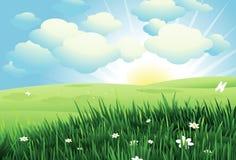 背景美好的春天 库存照片