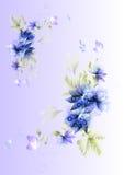 背景美好的花卉向量 免版税库存照片