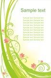 背景美好的花卉向量 免版税库存图片