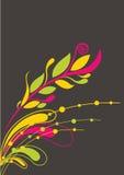 背景美好的花卉桃红色软件 免版税库存照片
