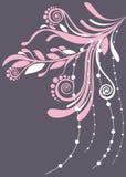 背景美好的花卉灰色桃红色软件 免版税库存照片