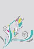 背景美好的花卉绿色软件 免版税库存照片