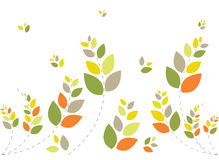 背景美好的花卉绿色软件 图库摄影