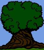 背景老木头 一根大树干和一棵老树的一个密集的冠的图象 图库摄影
