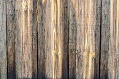 背景老木头 免版税库存图片