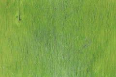 背景老葡萄酒被绘的绿色胶合板 免版税库存照片