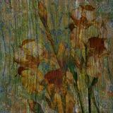 背景背景卡片设计花卉例证 库存图片