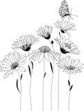 背景背景卡片设计花卉例证 库存照片
