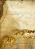 背景胸口grunge老茶纹理 库存照片