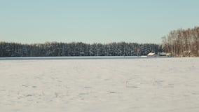 背景能例证主题使用的冬天 领域和森林雪的在晴朗的天气和一个小村庄或村庄的巨大霜风景 影视素材
