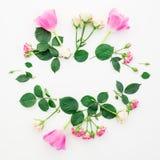 背景能明信片使用的华伦泰 与在白色背景和瓣的花卉框架隔绝的郁金香花、玫瑰 平的位置,顶视图 库存照片