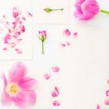 背景能明信片使用的华伦泰 桃红色郁金香、玫瑰和在白色背景隔绝的葡萄酒纸牌 平的位置,顶视图 免版税库存图片