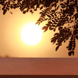 背景自然和日落 免版税图库摄影