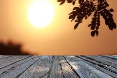 背景自然和日落 免版税库存照片