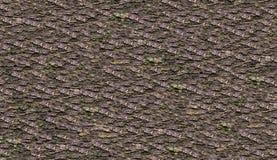 背景自然棕色木吠声水平的自然样式 免版税库存图片