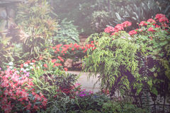 背景自然风景公园 在葡萄酒样式的花Garden.vector花卉背景 免版税图库摄影