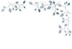 背景花卉叶子装饰品 库存图片