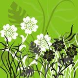 背景花卉向量 免版税库存图片