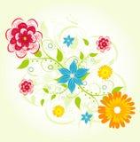 背景花卉夏天 免版税库存图片