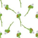 背景花卉无缝的向量 库存图片
