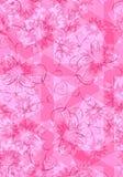 背景花卉桃红色纹理 免版税库存图片