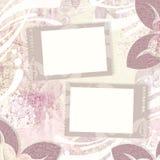 背景花卉框架二葡萄酒 图库摄影