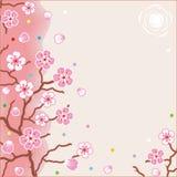 背景花卉模式春天 皇族释放例证
