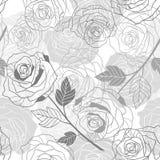 背景花卉玫瑰 无缝的向量 免版税库存照片