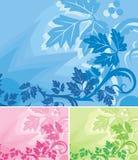 背景花卉系列 库存图片