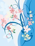 背景花卉系列 免版税库存照片