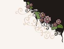 背景花卉系列 库存照片