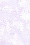 背景花卉紫色 库存图片