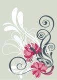 背景花卉绿橄榄whiteand 库存图片