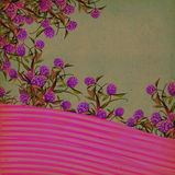 背景花卉葡萄酒 库存照片