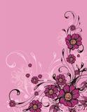 背景花卉装饰物 库存照片
