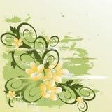 背景花卉grunge向量 图库摄影
