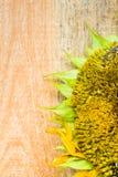 背景花向日葵种子木工作台面 免版税图库摄影