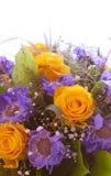 背景花束查出的玫瑰空白黄色 库存照片