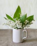 背景花束装饰例证春天 库存图片
