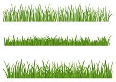 背景草绿色查出的白色 高度设计自然的元素的设置草 草坪 皇族释放例证