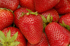 背景草莓 免版税库存照片