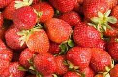 背景草莓 库存照片