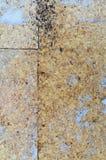 背景董事会broun颜色黄柏构造了 库存照片