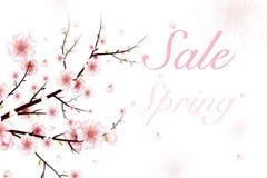 背景蒲公英充分的草甸春天黄色 导航春天与桃红色花,芽,瓣落的绽放分支的例证 库存例证