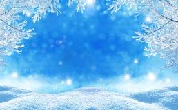 背景蓝色圣诞节云彩颜色构成包括的剥落梯度小山水平更低我的部分投资组合富有请看到剪影天空雪云杉正方形那里冠上结构树冬天 库存照片